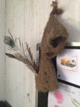 A weaver bird's nest found outdoors and brought inside to include in the classroom environment